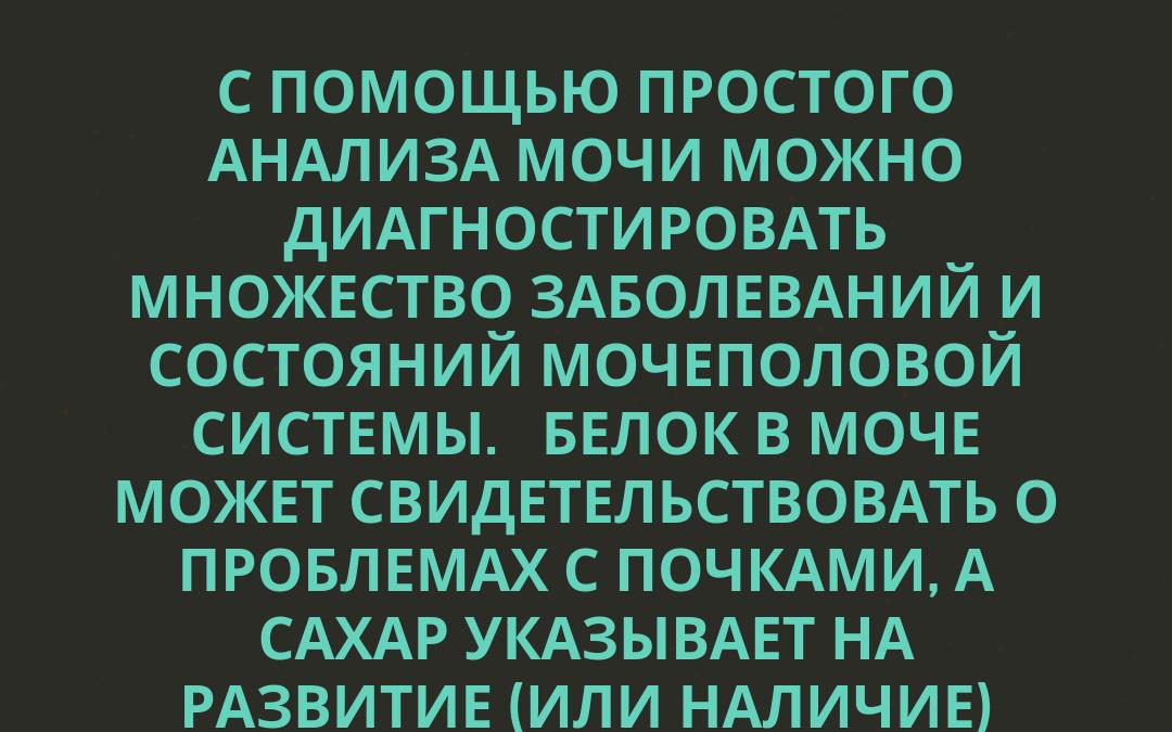 АНАЛИЗ МОЧИ